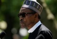 """Le président nigérian part en """"vacances"""""""