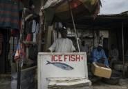La malédiction Boko Haram continue de frapper la pêche, principale richesse du lac Tchad