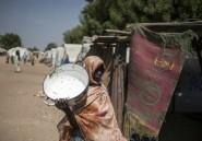 Nigeria: 33 enfants sont morts dans un camp du Nord-Est en quinze jours