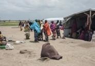 Nigeria: les déplacés de Boko Haram et l'illusion du retour,
