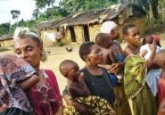 Les Pygmées, maîtres de la forêt en Afrique centrale