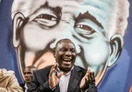 Afrique du Sud: Ramaphosa exclut des sanctions internationales