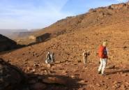 Tchad, Mauritanie ou Botswana: l'Afrique veut séduire les voyagistes français