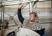 En Afrique du Sud, le roi des Zoulous ne veut pas entendre parler de réforme foncière