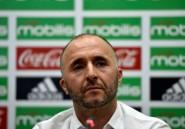 CAN-2019/Algérie: Belmadi va-t-il enfin incarner la stabilité ?