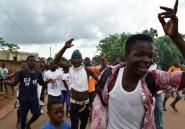 Elections/Côte d'Ivoire: victoire du pouvoir, le PDCI en embuscade pour 2020
