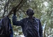 Au Maroc, les migrants ne renoncent pas malgré les refoulements