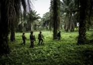 Est de la RDC: opération militaire conjointe contre les rebelles ougandais des ADF
