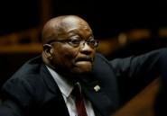 Afrique du Sud: report
