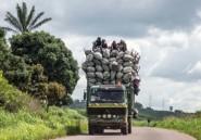 Elections en RDC: entre Kinshasa et ses voisins, défiance et convoitise