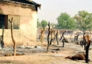 "Recrudescence des attaques de ""bandits"" dans le nord-ouest du Nigeria"