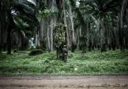 Massacres de Yumbi en RDC: des centaines de morts