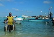 Somalie: le directeur maltais du port de Bossasso (DP World) tué par balles