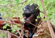 Burkina: vaste réorganisation