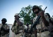 Cameroun: retour volontaire du Nigeria d'ex-jihadistes de Boko Haram