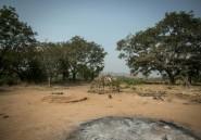 Nigeria: Kaduna, région explosive en période électorale