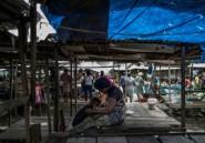 """Cameroun: dans le Sud-Ouest anglophone en conflit, """"même les chiens n'errent plus"""""""