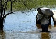 Gros dégâts au Mozambique frappé de plein fouet par le cyclone Idai