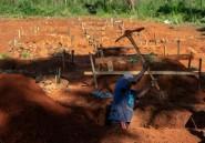 Zimbabwe: dans la vallée de la mort, meurtrie et isolée par le cyclone
