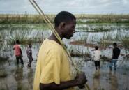 Au Mozambique, les petits paysans dévastés après la destruction de leurs récoltes
