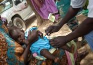 Sous 40 degrés, les mille défis de la vaccination dans l'est du Tchad