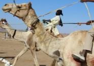 Dans le nord-est du Tchad en fête en dépit de l'instabilité