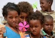 Niger: 4.500 réfugiés Maliens rentrés dans leur pays depuis 2018
