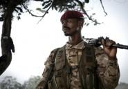 """L'accord de paix en Centrafrique """"n'accorde pas l'amnistie"""" selon la Présidence"""