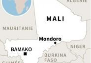 Mali: 18 civils tués dans une double embuscade dans le centre du pays