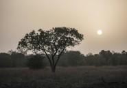 Bénin: deux touristes français disparus dans le nord