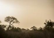 Bénin: un corps retrouvé dans le parc national où ont disparu deux Français