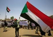 Soudan: la création de deux conseils de transition sur la table (manifestant)
