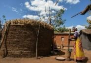 Au Malawi, le village du chef de l'opposition croit en l'enfant du pays