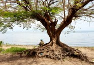 RDC: 19 civils tués dans une attaque d'hommes armés au bord du lac Albert