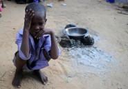 """Somalie: une ONG met en garde contre une nouvelle """"crise humanitaire"""""""