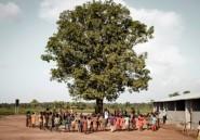 Centrafrique: des ateliers de dessin pour enfants traumatisés