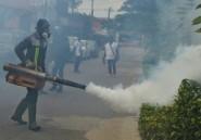 La Côte d'Ivoire lutte contre le retour de la dengue