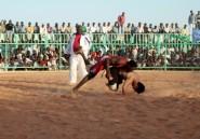 Au Soudan, les lutteurs retournent au ring malgré les violences