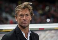 """CAN-2019: """"l'important, c'est les points de départ et d'arrivée"""", selon Renard, ambitieux pour le Maroc"""