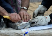 Sénégal: près de 800 kg de cocaïne saisis