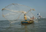 Les stocks de poissons fondent, le Ghana lutte contre la surpêche