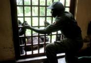 RDC: un garde et un chauffeur tués dans un parc naturel