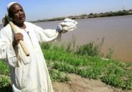 Le barrage éthiopien sur le Nil bleu suscite l'espoir des paysans soudanais
