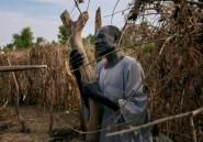 Soudan du Sud: après les inondations, l'heure est