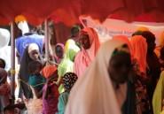 Insécurité au Sahel: doublement en 2019 des personnes en besoin d'aide alimentaire immédiate