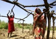 Darfour: le Soudan ouvre une enquête sur les crimes commis par le régime de Béchir
