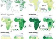 60 ans après, l'Afrique toujours en quête de son modèle de développement