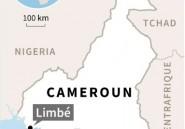 Un pétrolier grec attaqué au Cameroun, huit marins enlevés
