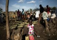 """RDC: en Ituri, l'ONU enquête sur des """"crimes contre l'humanité"""""""