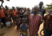 Le nombre de réfugiés camerounais anglophones a augmenté avant les législatives (HCR)